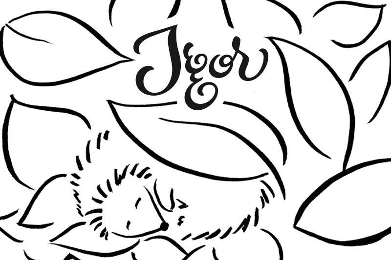 GfK-Kinderbuch, Illustration und Lettering: Igel Igor